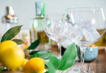 Elaboración gin-tonic perfecto