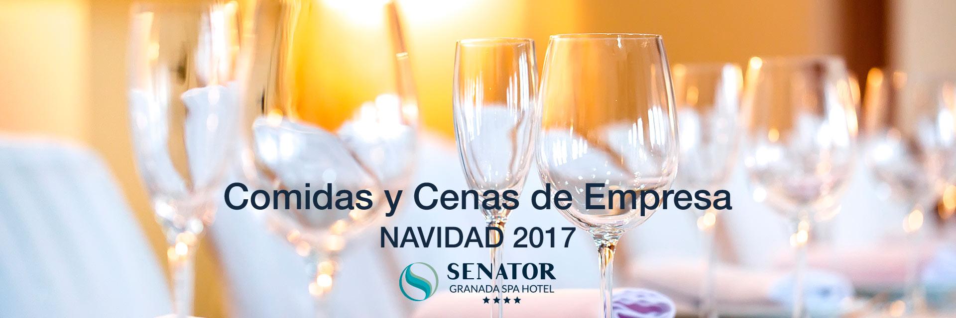 Comidas y cenas de empresa en Senator Granada Spa Hotel
