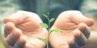 Senator Hotels & Resorts recibe el sello de su huella de carbono para combatir el cambio climático
